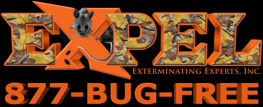 Expel Exterminating 877-BUG-FREE